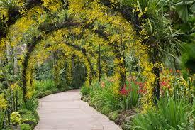 Botanic garden archway